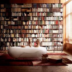 Orgías de libros